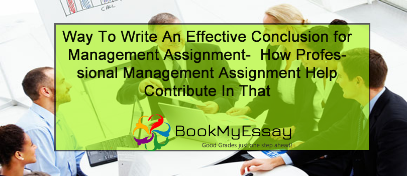 Is it efficient to use the assignment writers